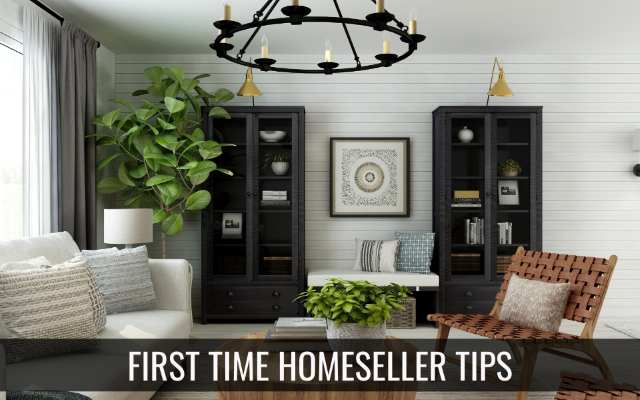 Tips for the First-Time Home Seller